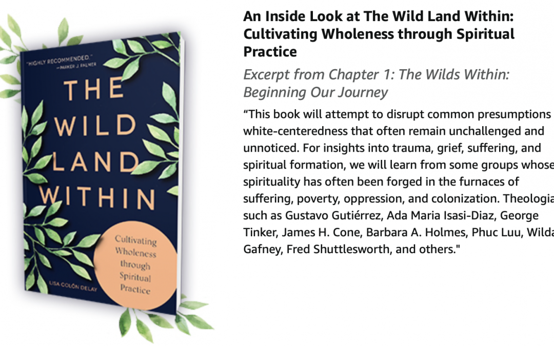 """#29 – """"Wild Land"""": Longing for Spiritual Fulfillment with Lisa Delay"""